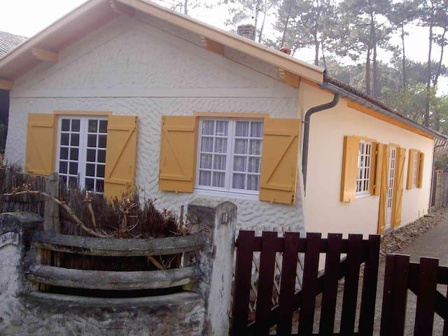 Villa à moins de 100m du bassin - Lège-Cap-Ferret