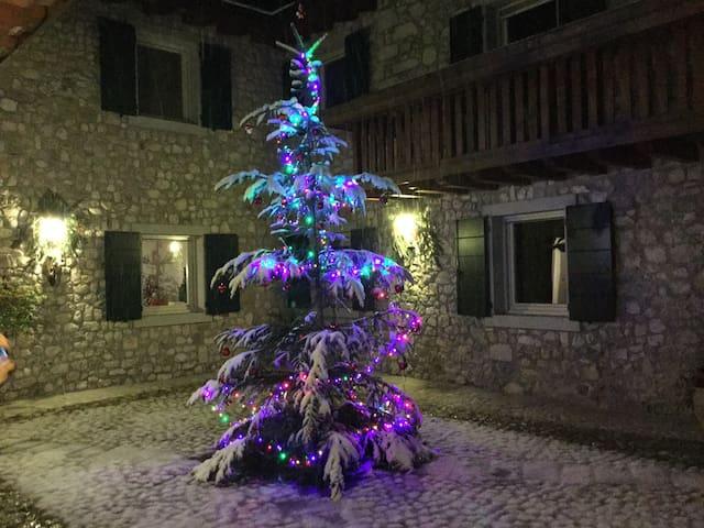 Romantic Agriturismo in Dolomiti