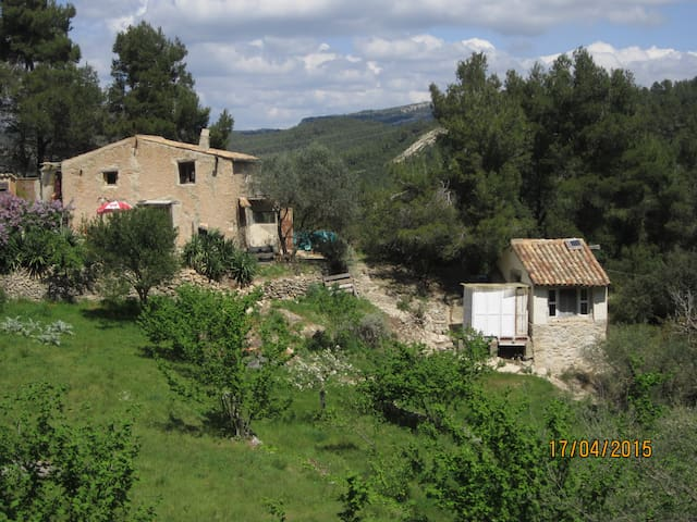 las fontanilles - Tivissa - Bed & Breakfast