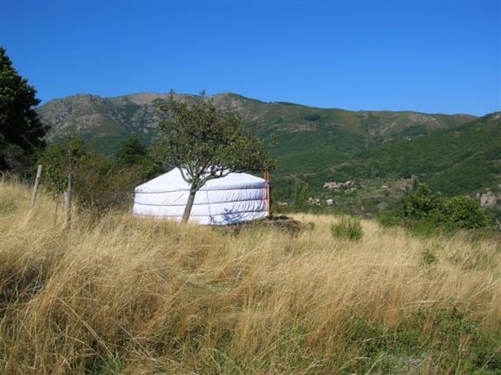 Yourte mongole au coeur des volcans - Ardèche