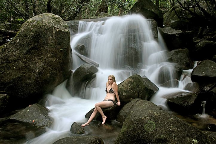 Daintree Cascades The Roundhouse