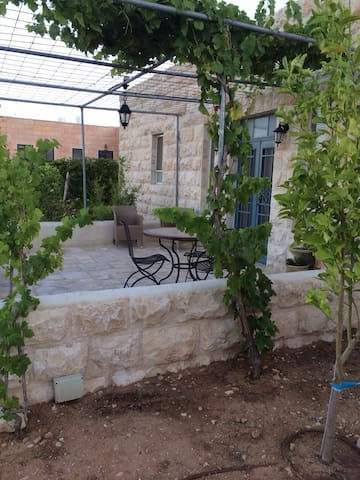 15 min from Jerusalem, inspiring... - Tekoa