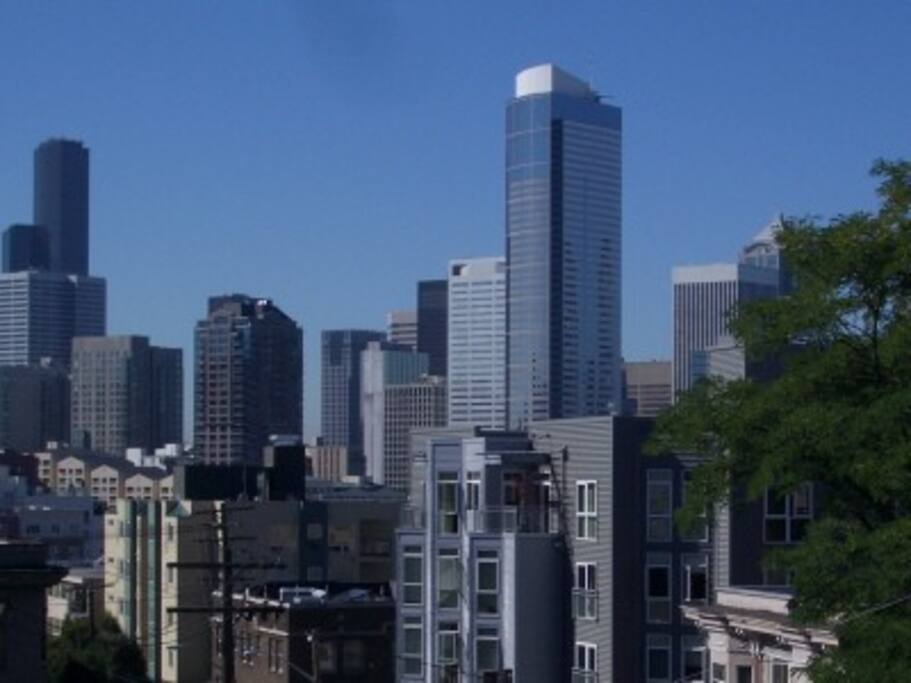 Great views of the space needle apartments for rent in for Seattle view apartments
