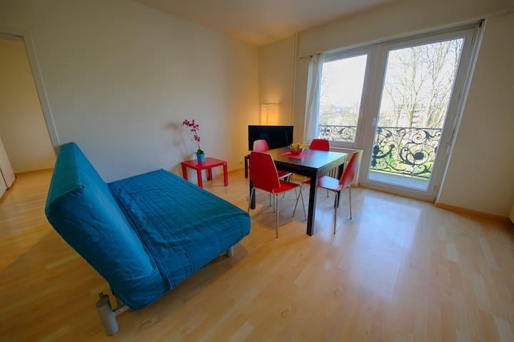 Stauffacher Apartment- Kuenzli