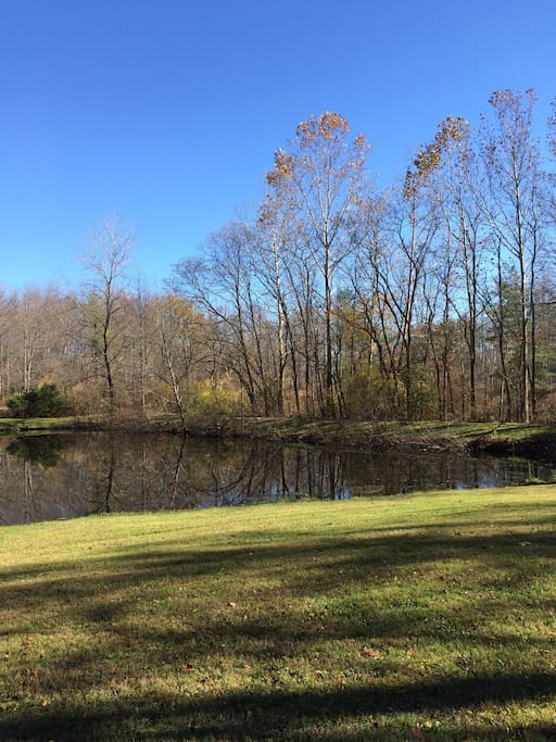 relax by the pond or take your laptop to the picnic table in good weather.