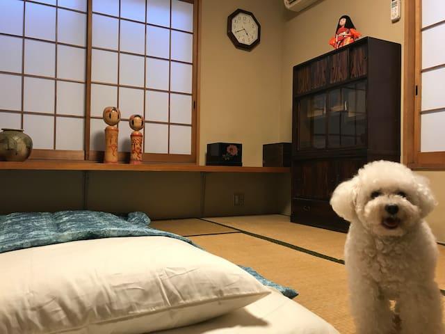 新宿にある和室の個室。布団と犬が好きな人に♪朝食付き