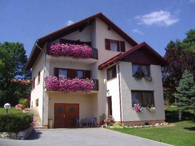 Guesthouse Hodak 3