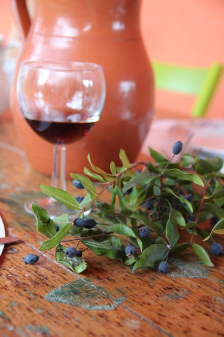 Mirto is a special plant which is spotted only in Sardinia and in Chile (Murta)
