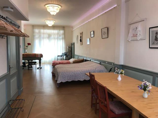 Volledig uitgerust appartement, hartje Haarlem