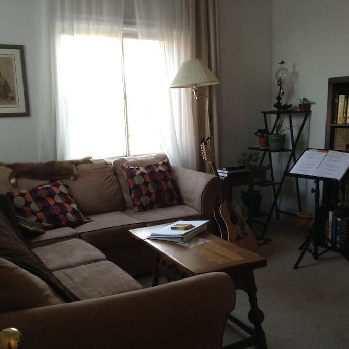 Confortable living room with pull out coach