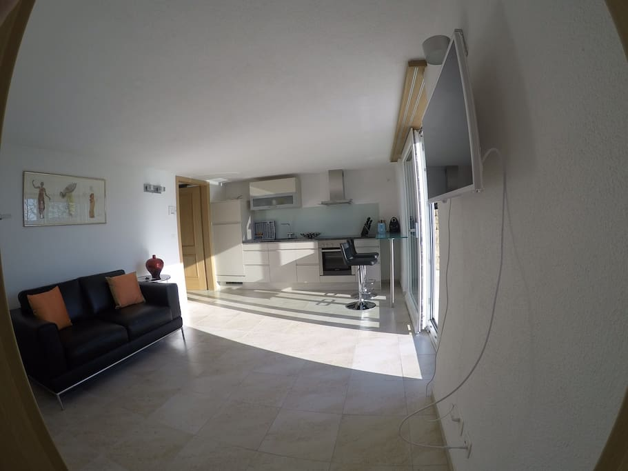 Living room and fully equipped kitschen and access to terrace