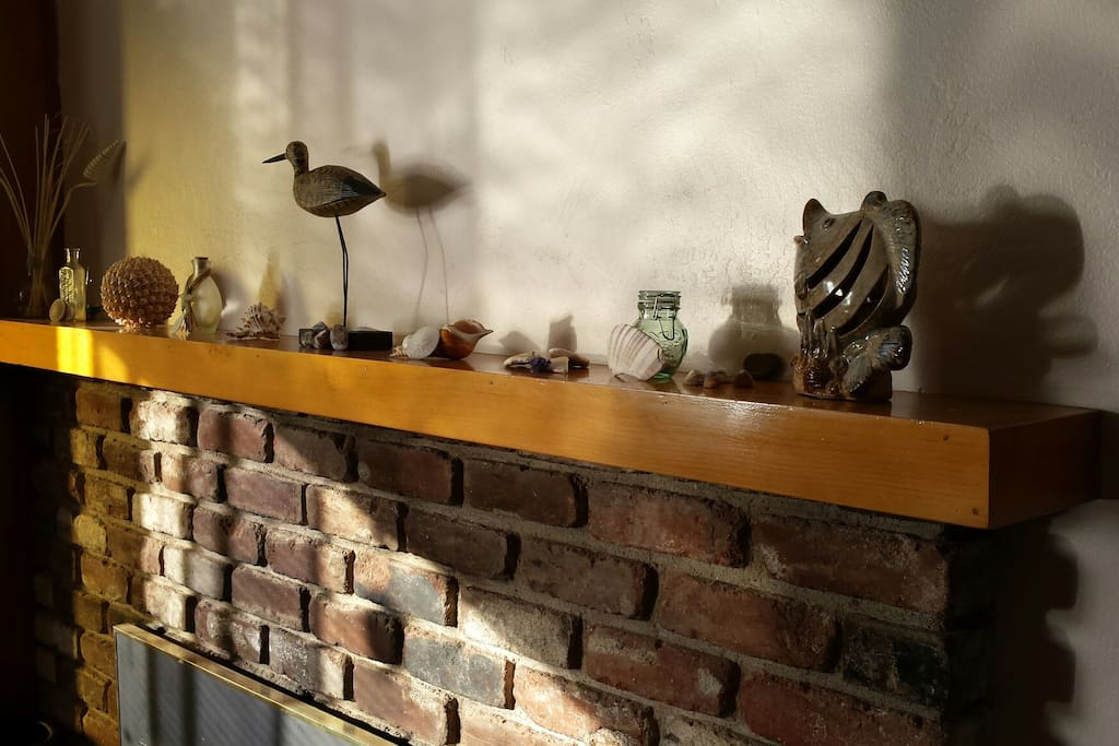 Dappled mantel with collected treasures from the seaside.