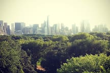 The rooftop from the Museum of Modern Art. The view over the Central Park.