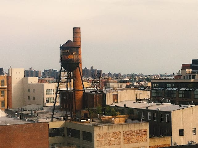 The view from the White Hotel in Williamsburg