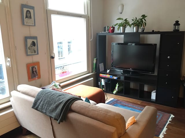 Cosy flat with the Vondelpark at your feet!