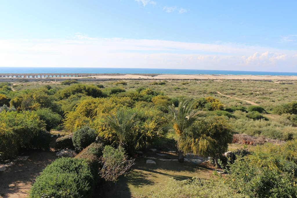 View. the house location on the Caesarea National Park
