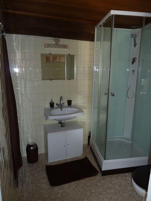 Salle de bain avec Douche, WC et machine à laver