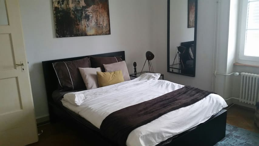 Nice room in central place in Basel - Basilea - Apartamento