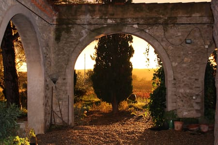Monplezy, beautiful, famous winery - Pézenas