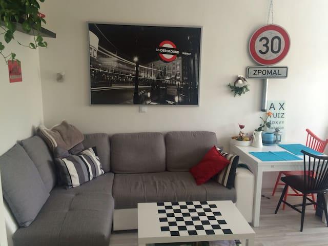 Sunny & Comfy flat /good location - Prague - Apartment