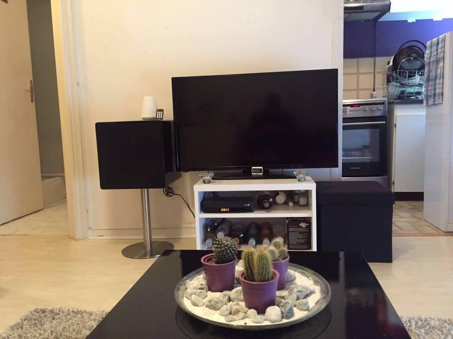 Séjour aménagé avec télévision internet et petit canapés confortable un petite table