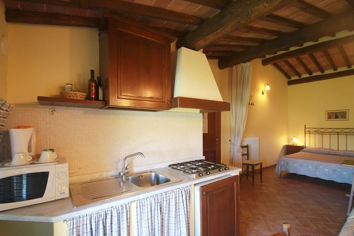 Studio apartment countryside Siena - Sovicille - Appartamento