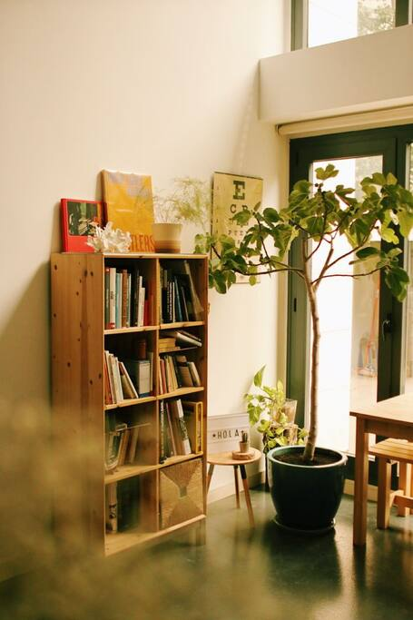 Part of the living room with our fig tree and a lot of photography and art books