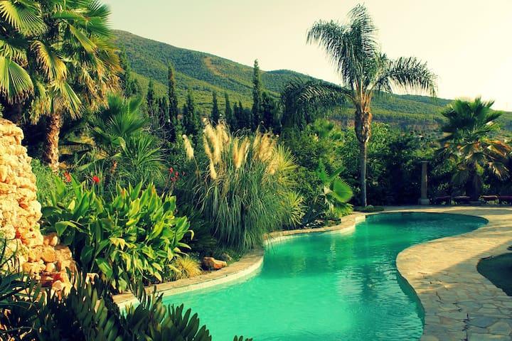 B&B | rural paradise | yoga | massage | nature - Malaga - Bed & Breakfast