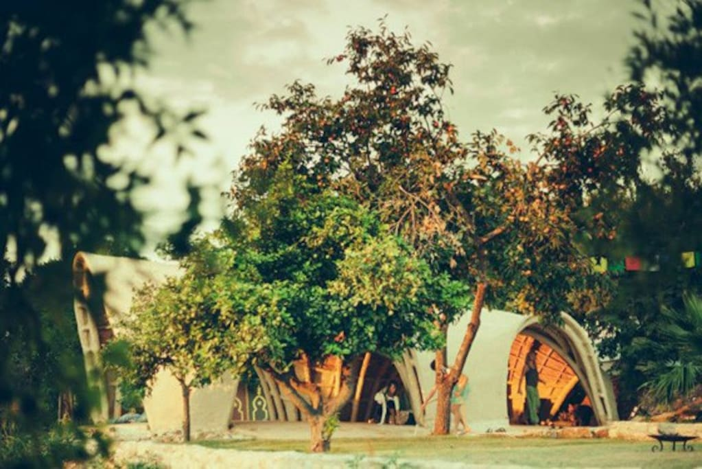 La Cabaña yoga hall - entirely hand made out of natural materials