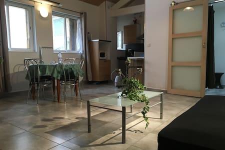 la maison a louer intramuros EU펜션 - Avignon