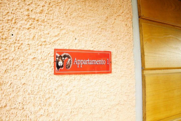 Appartamento N1 in affitto
