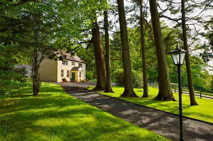 Dromard B and B - Enniskillen - Bed & Breakfast