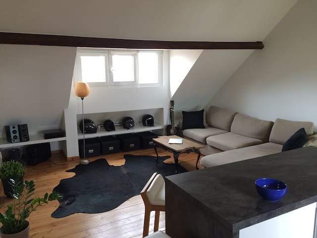 Old city apartment downtown luxury - Lille