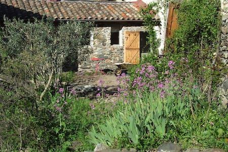 Chambre chez l'habitant dans hameau - Valleraugue - Hus