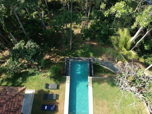 Stunning infinity pool overlooking mature garden