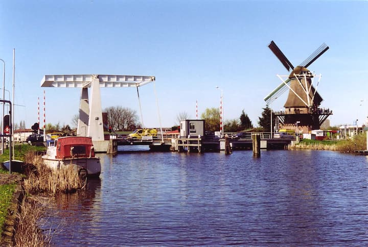 Luxurious house: visit Amsterdam and relax