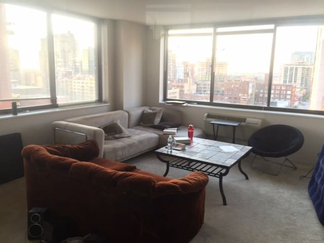 Spacious 2 bedroom, 2 bath high-rise - Chicago - Appartamento