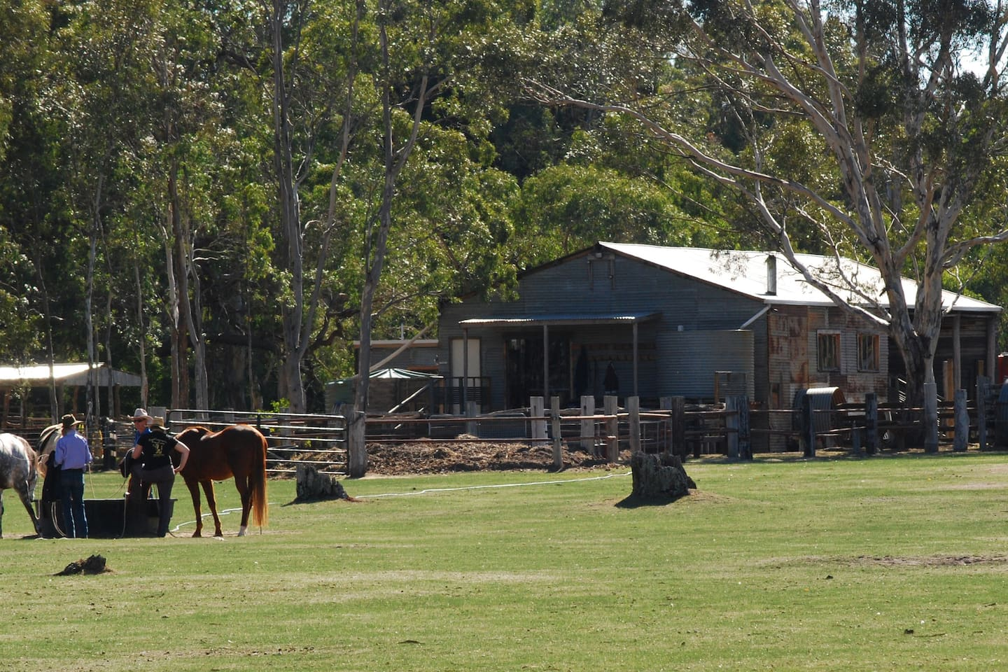 Woolshed facilities available for campers and/or B&B guests - fully equipped kitchen/dining/BBQ/woodfireshowers/toilets/wash up area