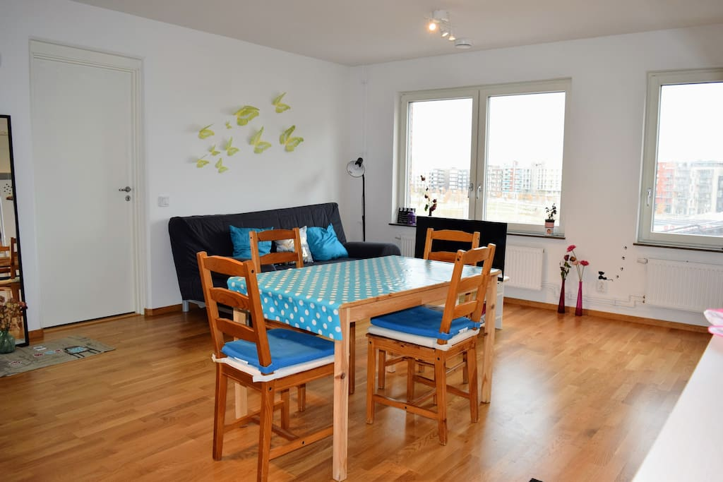 Large kitchen/living room. Sofa bed in the background