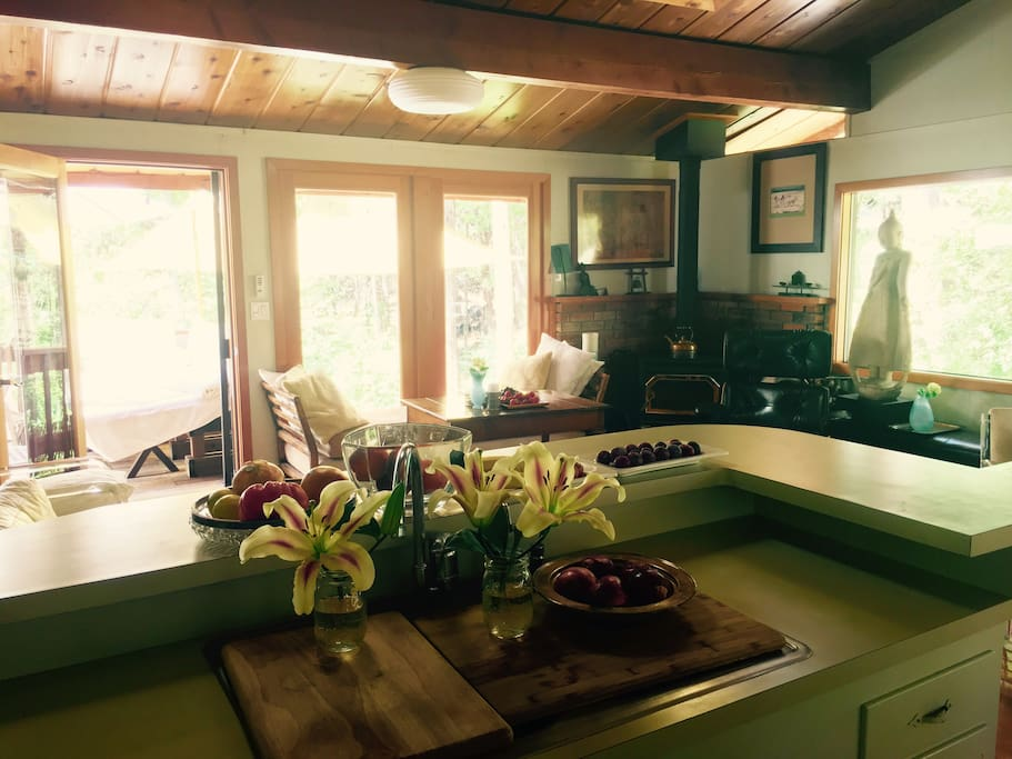 Views of the forest & creek from the kitchen.Watch cooking in kitchen on owners site GeorgieSmith dot com