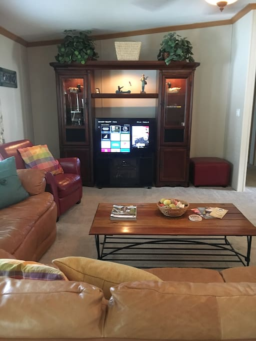 Smart TV with Roku, DVD player and cable