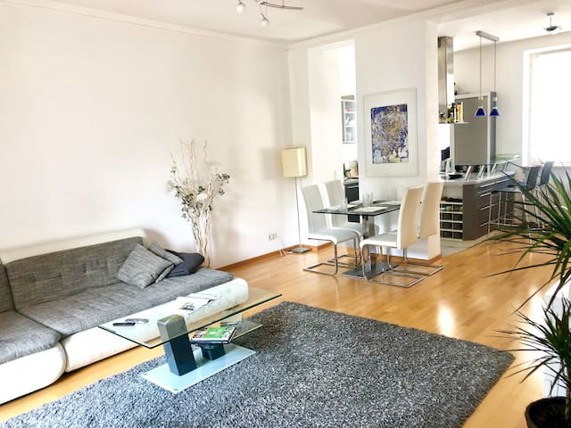 Elegant, comfortable Apartment in historic palais