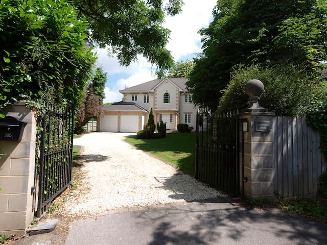 Spacious detached individual design luxury home