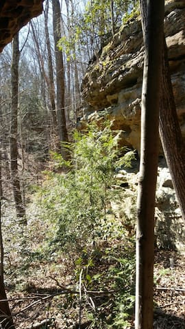 Daniel Boone National Forest- a hike behind our farm