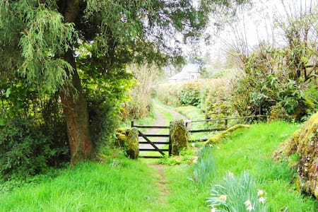 Gorgeous Moorland Sanctuary - Chagford - Huis
