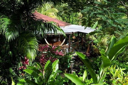 Nature Bungalow Rooms, SemiDelux Rooms & Eco Rooms - Concord - Aamiaismajoitus