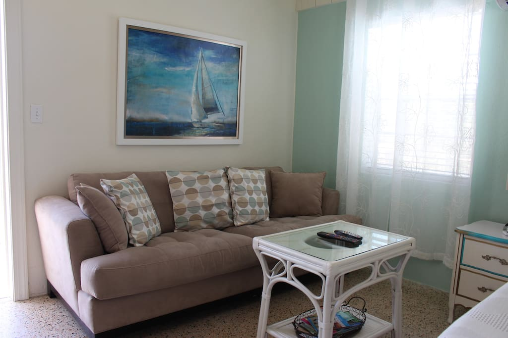 Sleeper sofa living area