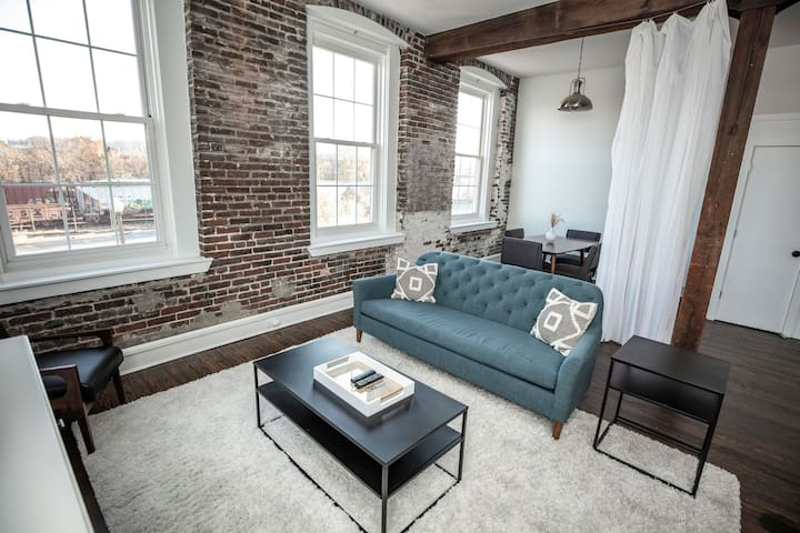 Sunny Newly Remodeled Loft Downtown