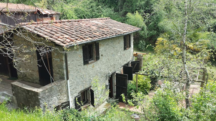 Tuscan cottage  in fabulous setting - Lucca - Casa