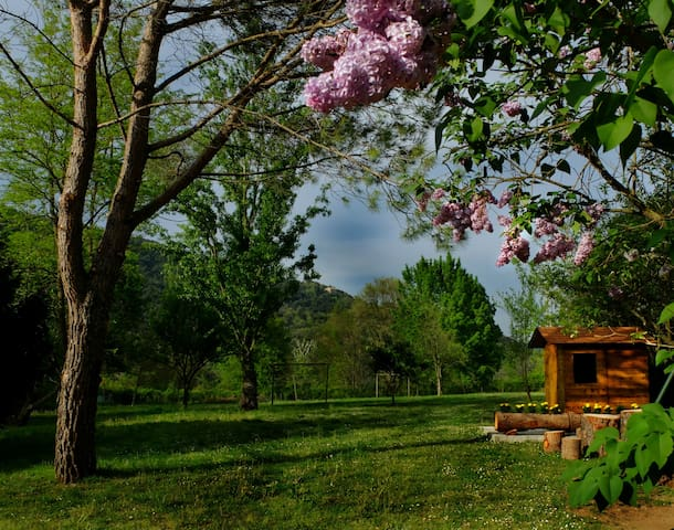 Patufet, gran jardín ideal niños - Sant Joan les Fonts - Huis